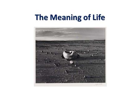 "The Meaning of Life. Questioning the Question View 1.When someone ask ""What is the meaning of life?"" I have no idea what they are asking. Agree or disagree?"