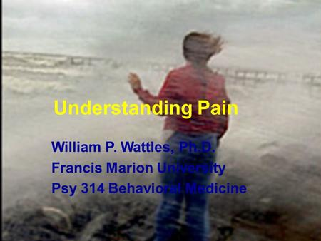 1 Understanding Pain William P. Wattles, Ph.D. Francis Marion University Psy 314 Behavioral Medicine.