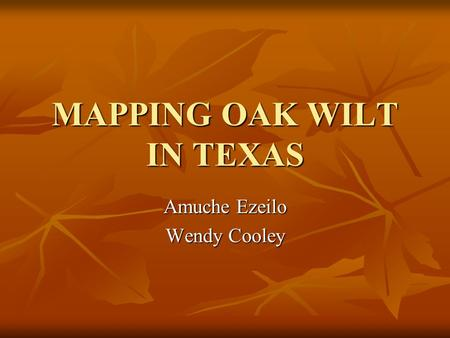 MAPPING OAK WILT IN TEXAS Amuche Ezeilo Wendy Cooley.