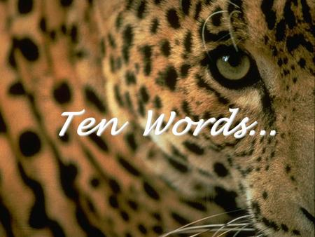 Ten Words... The most selfish one-letter word... I Avoid it Avoid it.