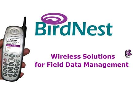BirdNest Services Wireless Solutions for Field Data Management.
