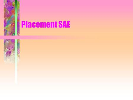 Placement SAE. What are the characteristics of a good placement SAE program? Relates to career objectives Provides job satisfaction Develops needed job.