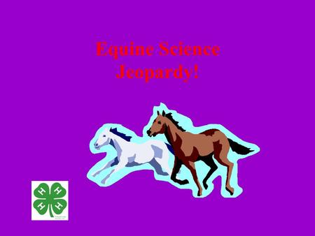 Equine Science Jeopardy!. VITALS GAITSNUTRITIONANATOMYHEALTH 100 200 300 100 200 300 400 500 400 500.