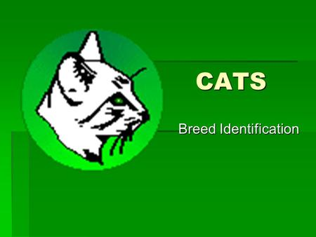 CATS CATS Breed Identification Breed Identification.