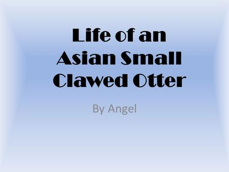 Life of an Asian Small Clawed Otter By Angel. Table of Contents.