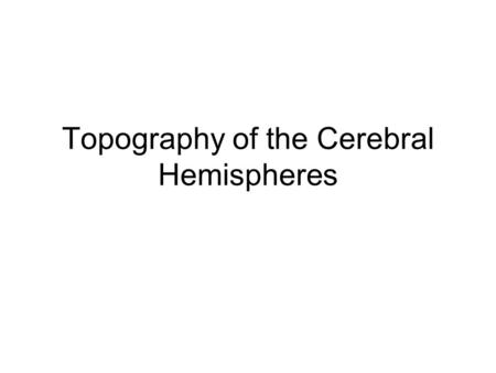 Topography of the Cerebral Hemispheres. Surface structures The surface of the brain has complicated folding which substantially increases the surface.