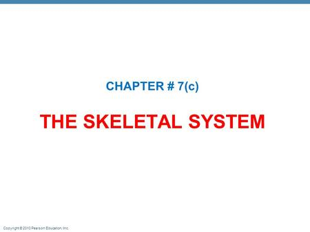 CHAPTER # 7(c) THE SKELETAL SYSTEM.