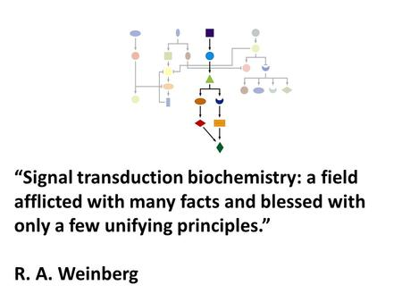 """Signal transduction biochemistry: a field afflicted with many facts and blessed with only a few unifying principles."" R. A. Weinberg."