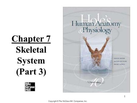 1 Copyright © The McGraw-Hill Companies, Inc.. Chapter 7 Skeletal System (Part 3)