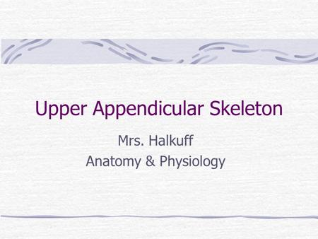 Upper Appendicular Skeleton Mrs. Halkuff Anatomy & Physiology.
