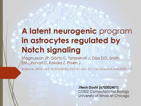 A latent neurogenic program in astrocytes regulated by Notch signaling Magnusson JP, Göritz C, Tatarishvili J, Dias DO, Smith EM,Lindvall O, Kokaia Z,
