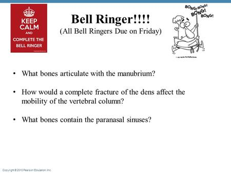 Copyright © 2010 Pearson Education, Inc. Bell Ringer!!!! (All Bell Ringers Due on Friday) What bones articulate with the manubrium? How would a complete.