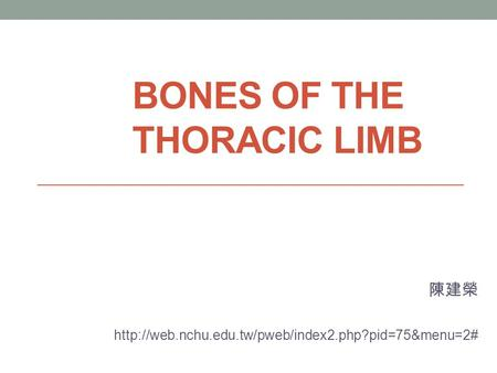 Bones of the thoracic limb