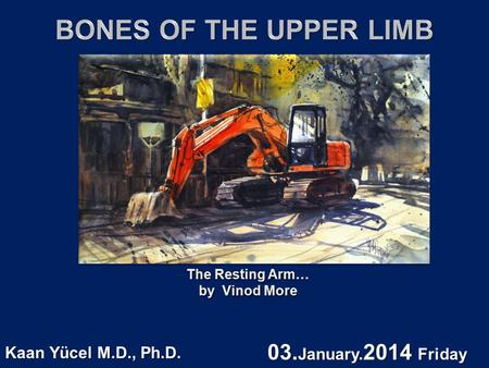 The Resting Arm… by Vinod More The Resting Arm… by Vinod More Kaan Yücel M.D., Ph.D. 03. January. 2014 Friday.