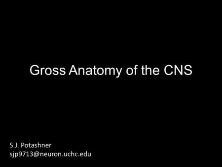 Gross Anatomy of the CNS