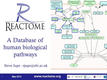 May 2012 1 A Database of human biological pathways Steve Jupe -
