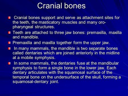 Cranial bones Cranial bones support and serve as attachment sites for the teeth, the masticatory muscles and many oro- pharyngeal structures. Cranial bones.