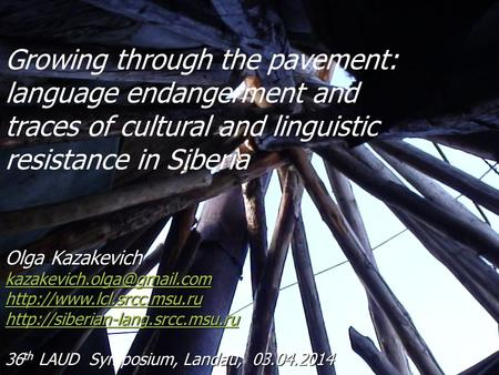 Growing through the pavement: language endangerment and traces of cultural and linguistic resistance in Siberia Olga Kazakevich