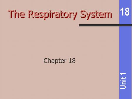 18 Unit 1 Chapter 18. 18 Unit 1 Helps pH control Pulmonary ventilation Moving air in & out External respiration Gas exchange between alveoli & blood Internal.