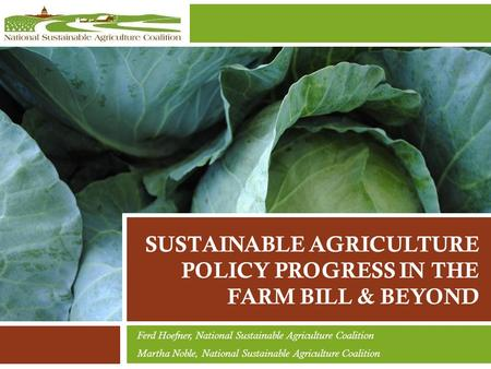 SUSTAINABLE AGRICULTURE POLICY PROGRESS IN THE FARM BILL & BEYOND Ferd Hoefner, National Sustainable Agriculture Coalition Martha Noble, National Sustainable.