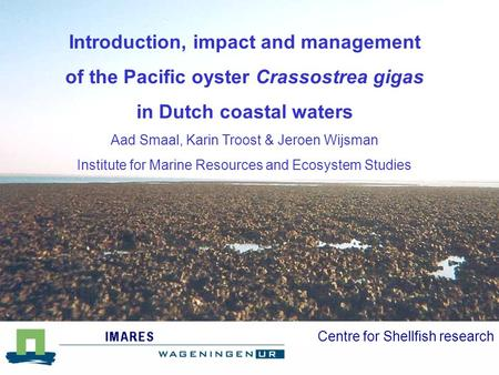 Centre for Shellfish research Introduction, impact and management of the Pacific oyster Crassostrea gigas in Dutch coastal waters Aad Smaal, Karin Troost.
