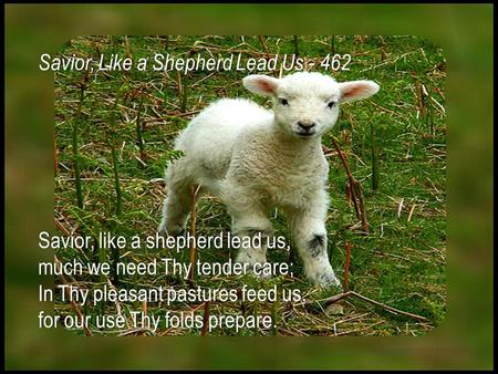 Savior, like a shepherd lead us,Savior, like a shepherd lead us, much we need Thy tender care; In Thy pleasant pastures feed us, for our use Thy folds.