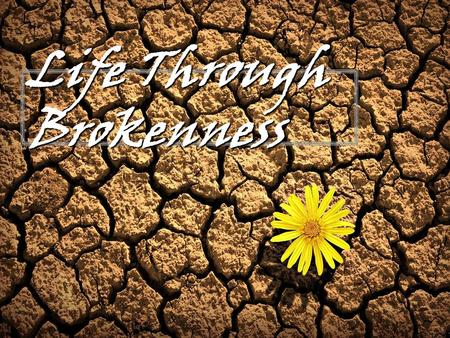 Life Through Brokenness. Psalm 51:17 (NIV) - The sacrifices of God are a broken spirit; a broken and contrite heart, O God, you will not despise.