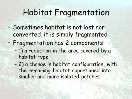 Habitat Fragmentation Sometimes habitat is not lost nor converted, it is simply fragmented Fragmentation has 2 components: –1) a reduction in the area.