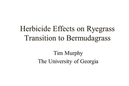 Herbicide Effects on Ryegrass Transition to Bermudagrass Tim Murphy The University of Georgia.