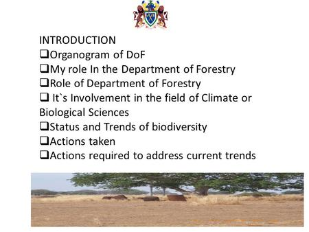 INTRODUCTION  Organogram of DoF  My role In the Department of Forestry  Role of Department of Forestry  It`s Involvement in the field of Climate or.