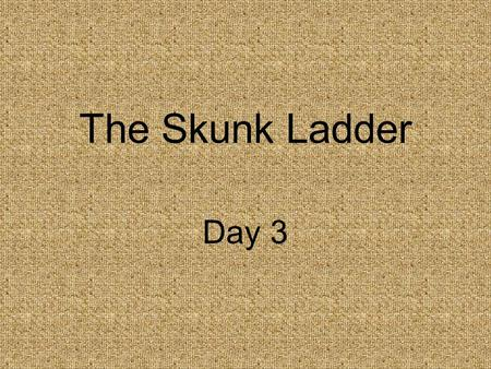 The Skunk Ladder Day 3. Concept Talk How can we find adventure in ordinary events?