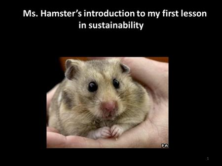 A Ms. Hamster's introduction to my first lesson in sustainability 1.