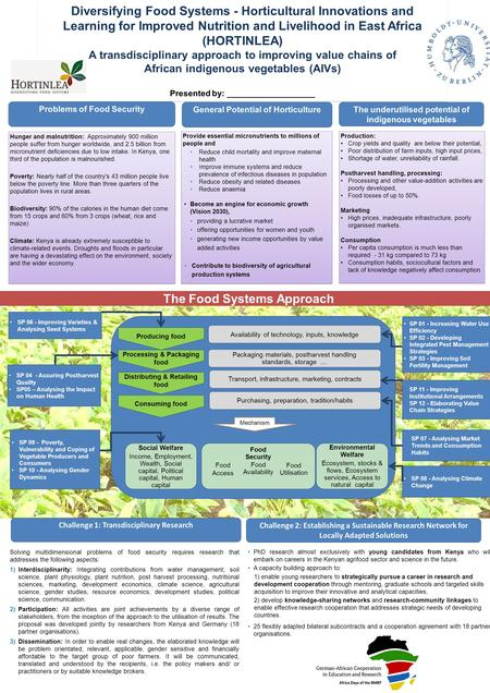 Diversifying Food Systems - Horticultural Innovations and Learning for Improved Nutrition and Livelihood in East Africa (HORTINLEA) A transdisciplinary.