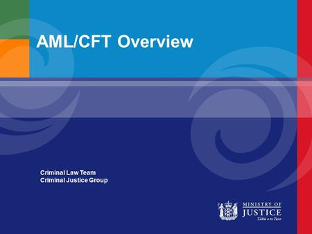 AML/CFT Overview Criminal Law Team Criminal Justice Group.