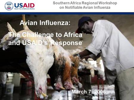 Avian Influenza: The Challenge to Africa and USAID's Response March 7, 2006 Southern Africa Regional Workshop on Notifiable Avian Influenza.