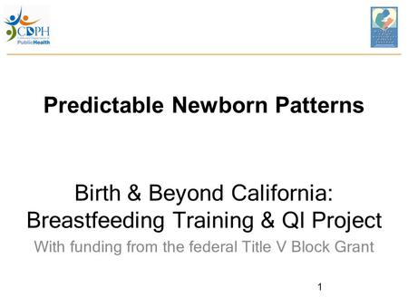Predictable Newborn Patterns Birth & Beyond California: Breastfeeding Training & QI Project With funding from the federal Title V Block Grant 1.