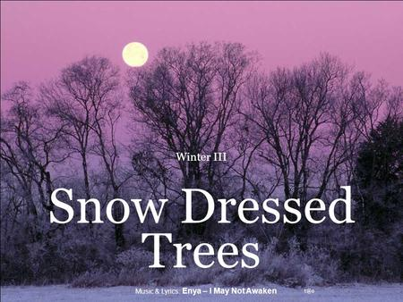 Music & Lyrics: Enya – I May Not Awaken Winter III Snow Dressed Trees.