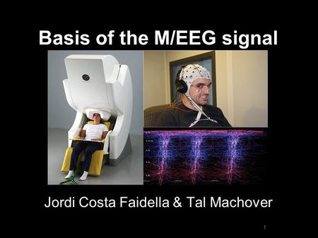 Basis of the M/EEG signal Jordi Costa Faidella & Tal Machover 1.