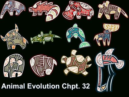 Animal Evolution Chpt. 32. Multicellular Multicellular Heterotrophic digest within body.