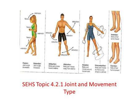 SEHS Topic Joint and Movement Type