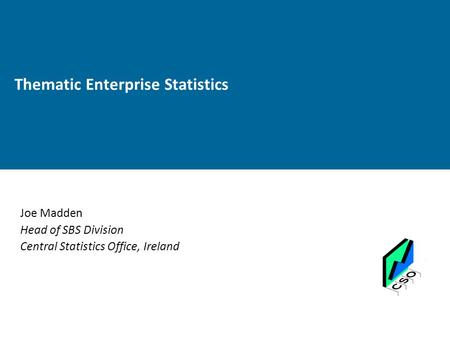 Thematic Enterprise Statistics Joe Madden Head of SBS Division Central Statistics Office, Ireland.
