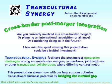S Y N E R G Y Intercultural Management & Communications T R A N S C U L T U R A L T RANSCULTURAL S YNERGY T RANSCULTURAL S YNERGY facilitate the post.