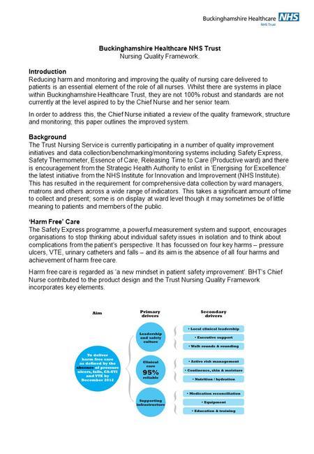 Improving the quality of nursing care essay