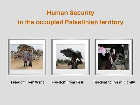 Human Security in the occupied Palestinian territory Freedom from WantFreedom to live in dignityFreedom from Fear.