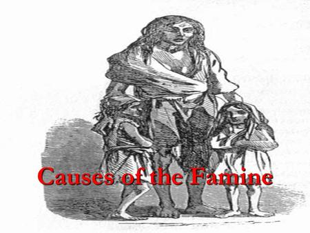 Causes of the Famine. Sub-division Family land-even if it was rented-was traditionally divided up equally among the sons on the death of the father. This.