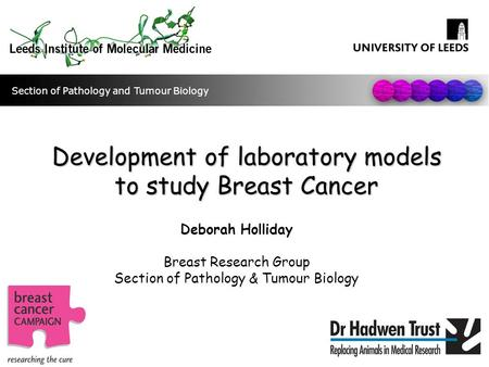 Development of laboratory models to study Breast Cancer Deborah Holliday Breast Research Group Section of Pathology & Tumour Biology Section of Pathology.