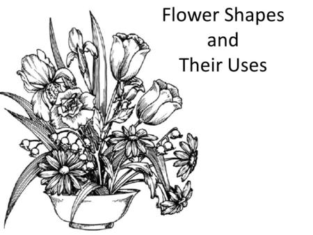 Flower Shapes and Their Uses. Line flowers are tall, and as the name implies, give your bouquet height, width, and a balanced look Most line flowers have.