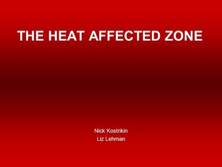 THE HEAT AFFECTED ZONE Nick Kostrikin Liz Lehman.