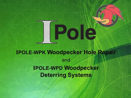 I POLE-WPK Woodpecker Hole Repair and I POLE-WPD Woodpecker Deterring Systems.