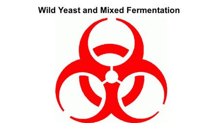 Wild Yeast and Mixed Fermentation. Who are the major players? Brettanomyces Lactobacillus Pediococcus.